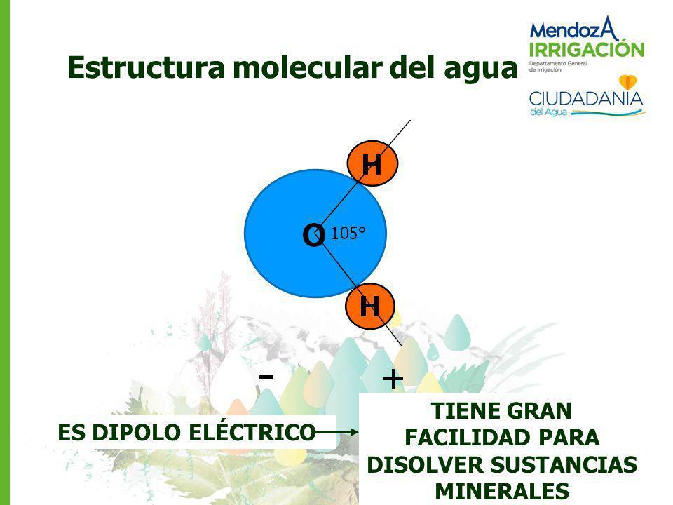Estructura molecular del agua ES DIPOLO ELÉCTRICO TIENE GRAN FACILIDAD PARA DISOLVER SUSTANCIAS MINERALES