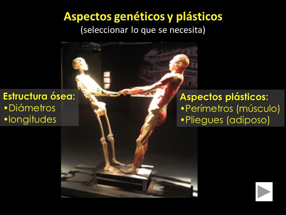 Aspectos genéticos y plásticos (seleccionar lo que se necesita) Estructura ósea: Diámetros longitudes Aspectos plásticos: Perímetros (músculo) Pliegues (adiposo)