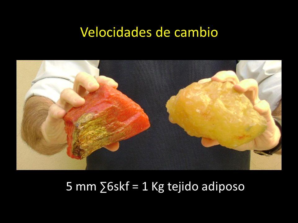 Velocidades de cambio 5 mm 6skf = 1 Kg tejido adiposo