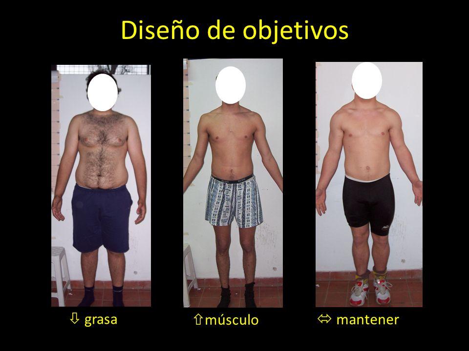 Diseño de objetivos grasa músculo mantener