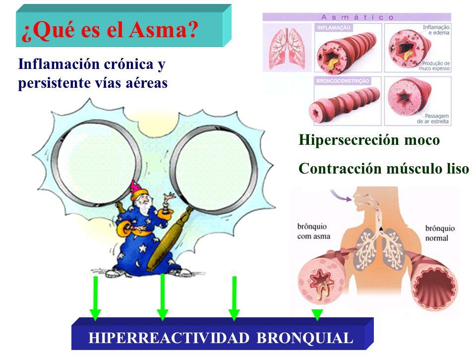 ¿Qué es el Asma? Inflamación crónica y persistente vías aéreas Hipersecreción moco Contracción músculo liso HIPERREACTIVIDAD BRONQUIAL