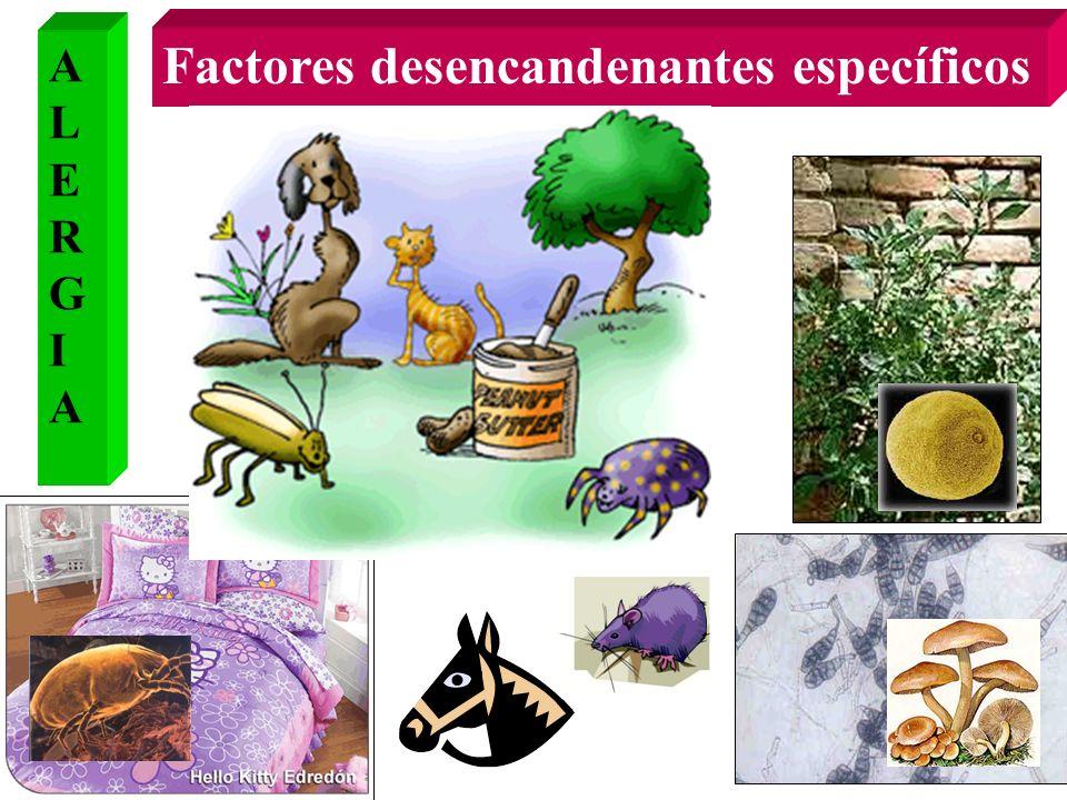 Factores desencandenantes específicos ALERGIAALERGIA