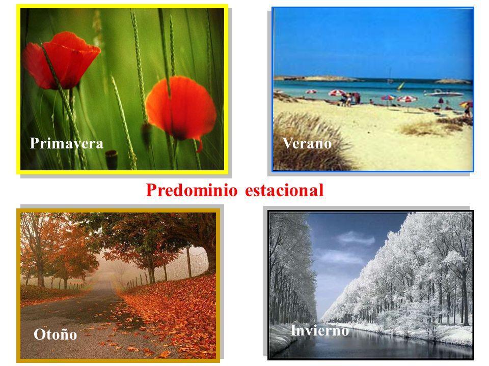 PrimaveraVerano Otoño Invierno Predominio estacional Otoño