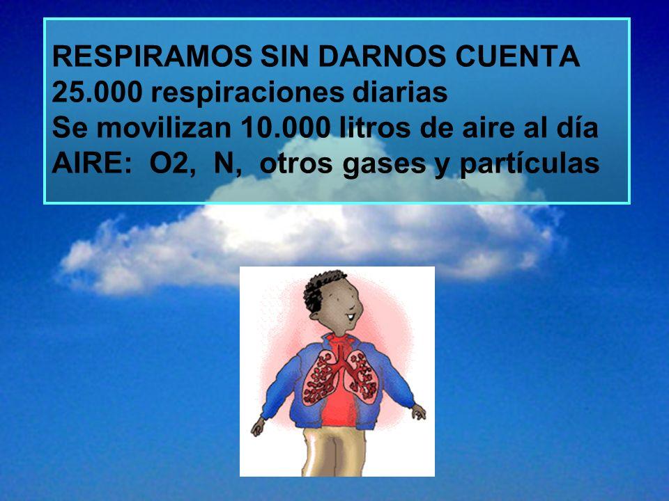 RESPIRAMOS SIN DARNOS CUENTA 25.000 respiraciones diarias Se movilizan 10.000 litros de aire al día AIRE: O2, N, otros gases y partículas