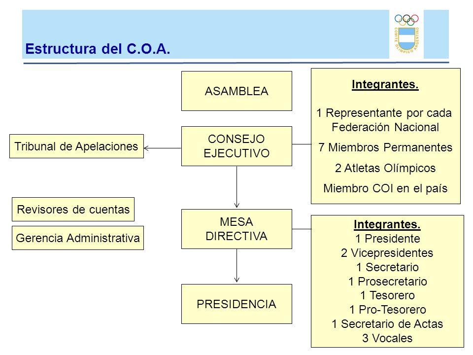 ASAMBLEA CONSEJO EJECUTIVO MESA DIRECTIVA PRESIDENCIA Tribunal de Apelaciones Revisores de cuentas Gerencia Administrativa Integrantes. 1 Representant