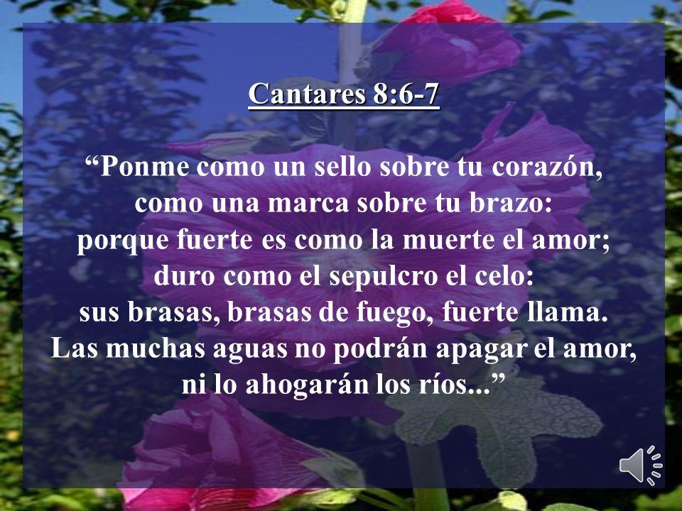 Cantares 8:6-7 Ponme como un sello sobre tu corazón, como una marca sobre tu brazo: porque fuerte es como la muerte el amor; duro como el sepulcro el