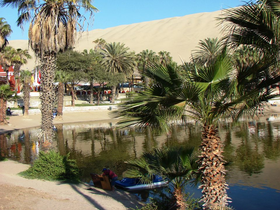 El espacio que rodea al oasis fue urbanizado , y el lago rodeado de casas, hoteles, y hasta un boulevard.