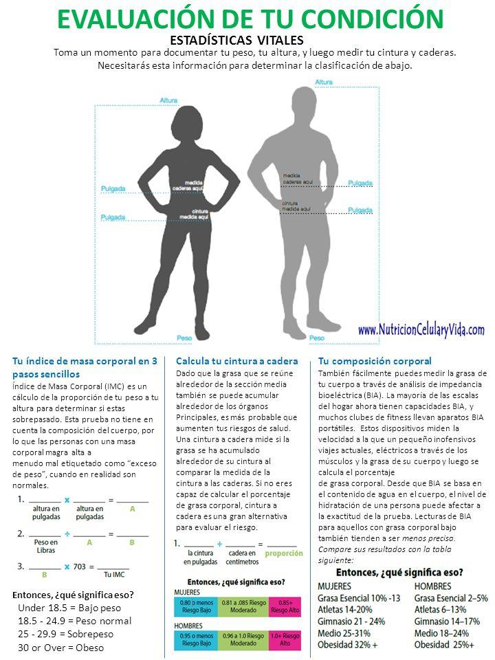 EVALUACIÓN DE TU CONDICIÓN ESTADÍSTICAS VITALES Toma un momento para documentar tu peso, tu altura, y luego medir tu cintura y caderas. Necesitarás es