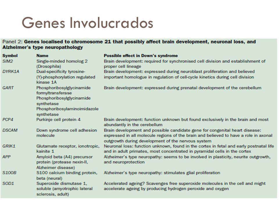 Genes Involucrados