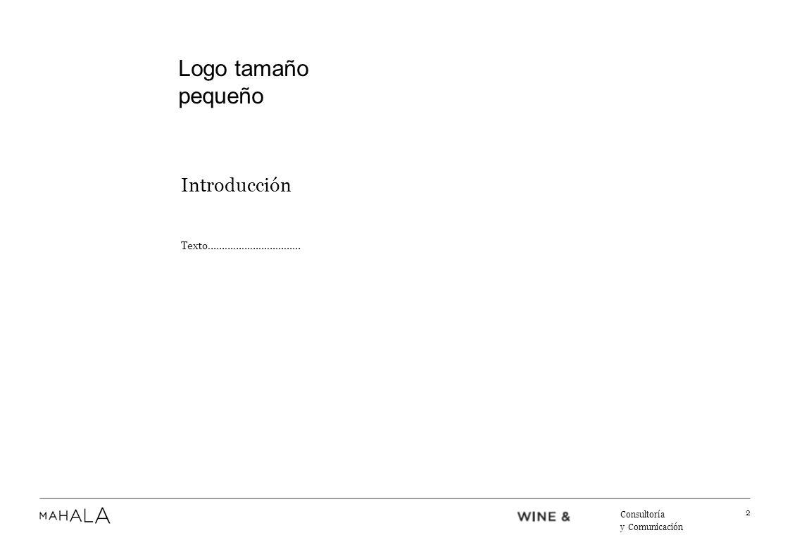 Texto Texto…………………………… 3 Consultoría y Comunicación Logo tamaño pequeño