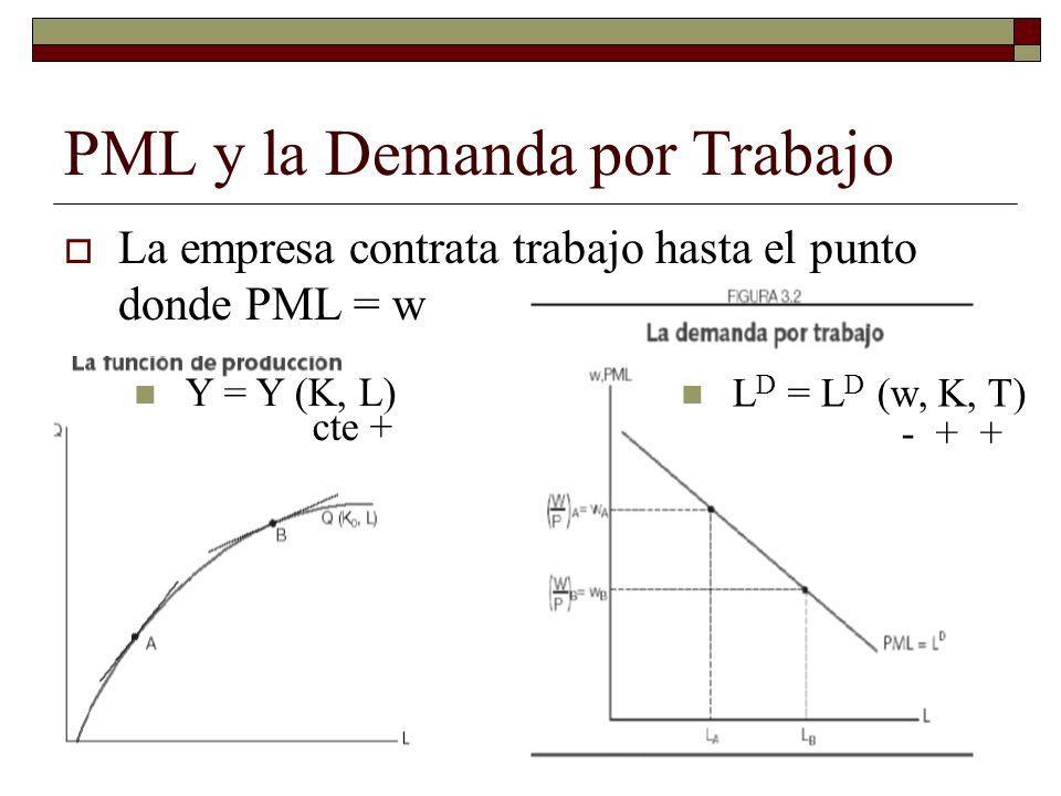 PML y la Demanda por Trabajo La empresa contrata trabajo hasta el punto donde PML = w L D = L D (w, K, T) - + + Y = Y (K, L) cte +