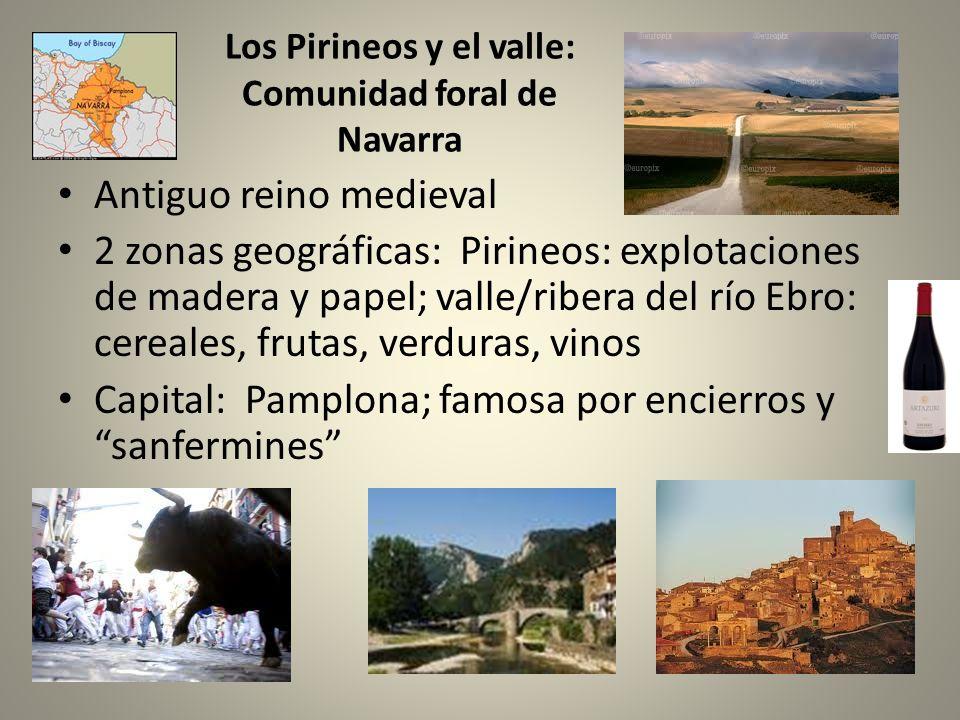 Los Pirineos y el valle: Comunidad foral de Navarra Antiguo reino medieval 2 zonas geográficas: Pirineos: explotaciones de madera y papel; valle/riber
