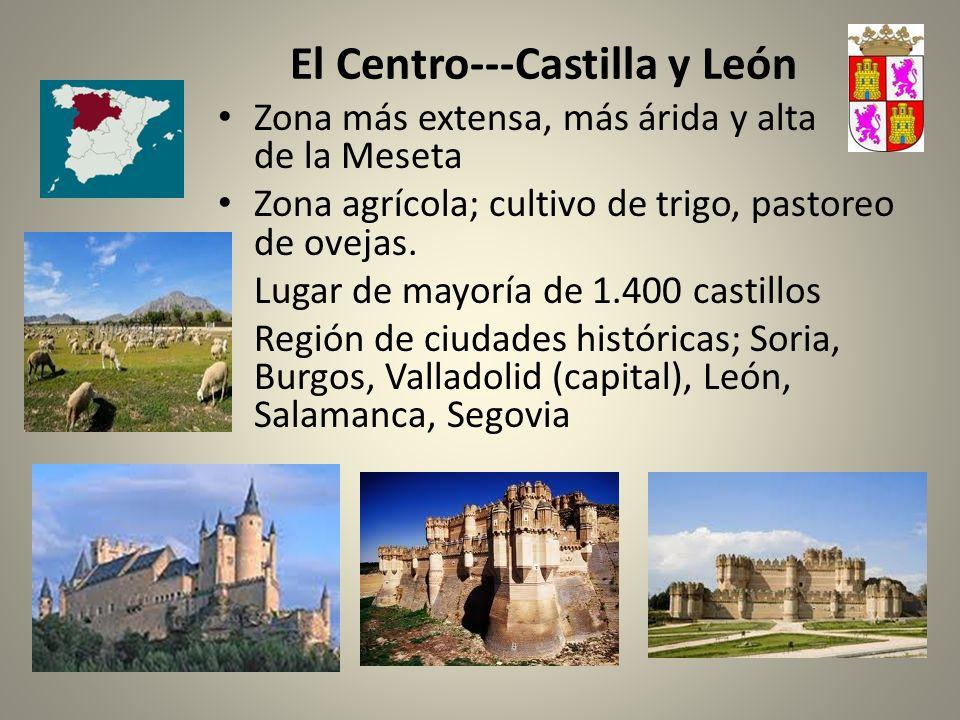 El Centro---Castilla y León Zona más extensa, más árida y alta de la Meseta Zona agrícola; cultivo de trigo, pastoreo de ovejas. Lugar de mayoría de 1