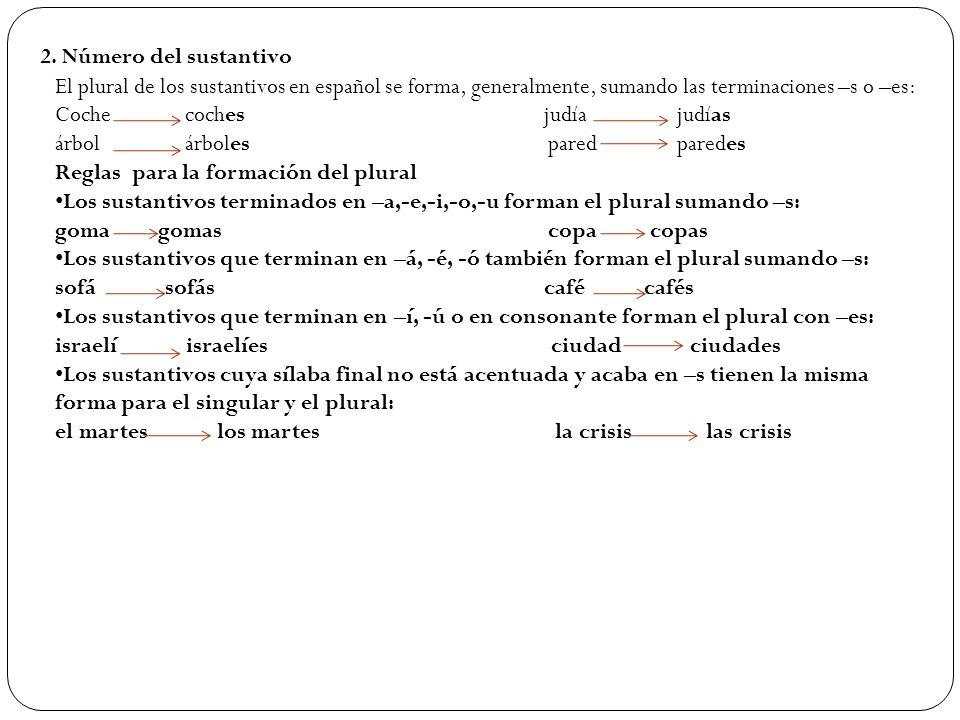 2. Número del sustantivo El plural de los sustantivos en español se forma, generalmente, sumando las terminaciones –s o –es: Coche coches judía judías