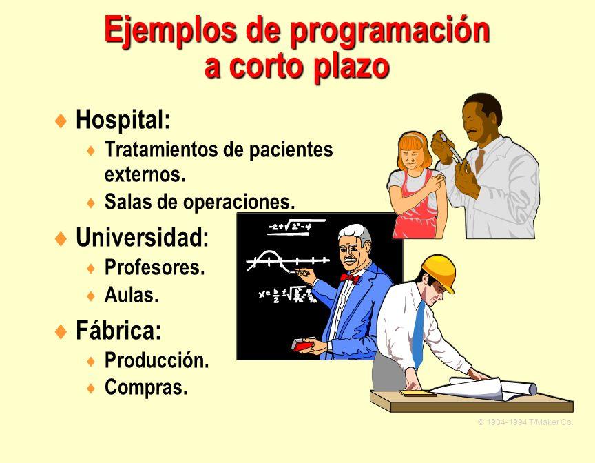 Hospital: Tratamientos de pacientes externos. Salas de operaciones. Universidad: Profesores. Aulas. Fábrica: Producción. Compras. © 1984-1994 T/Maker