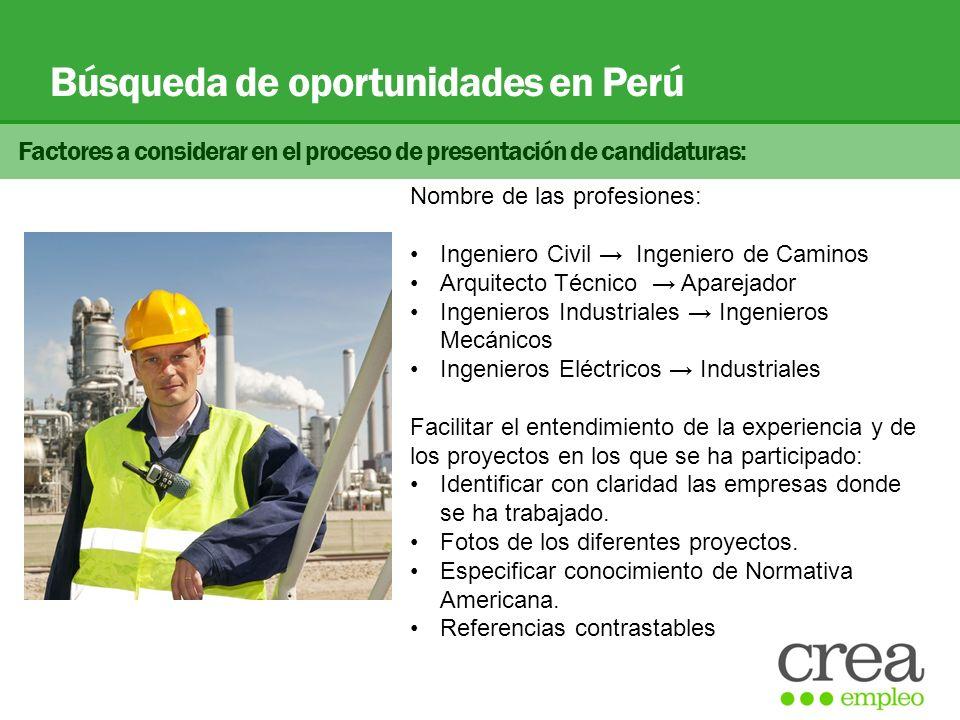 Búsqueda de oportunidades en Perú Factores a considerar en el proceso de presentación de candidaturas: Nombre de las profesiones: Ingeniero Civil Inge