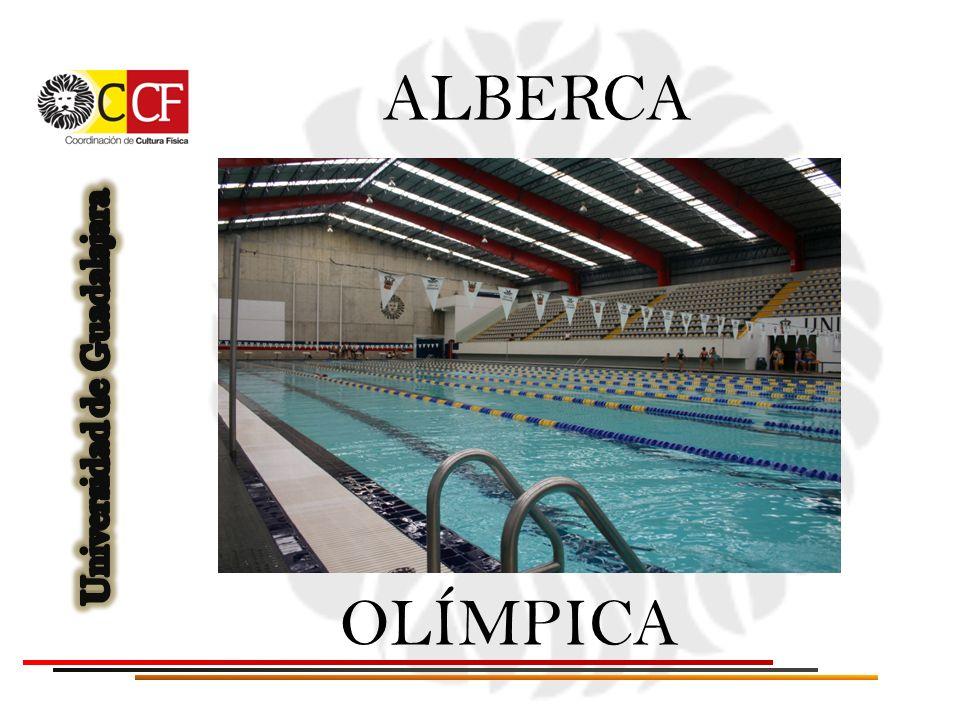ALBERCA OLÍMPICA