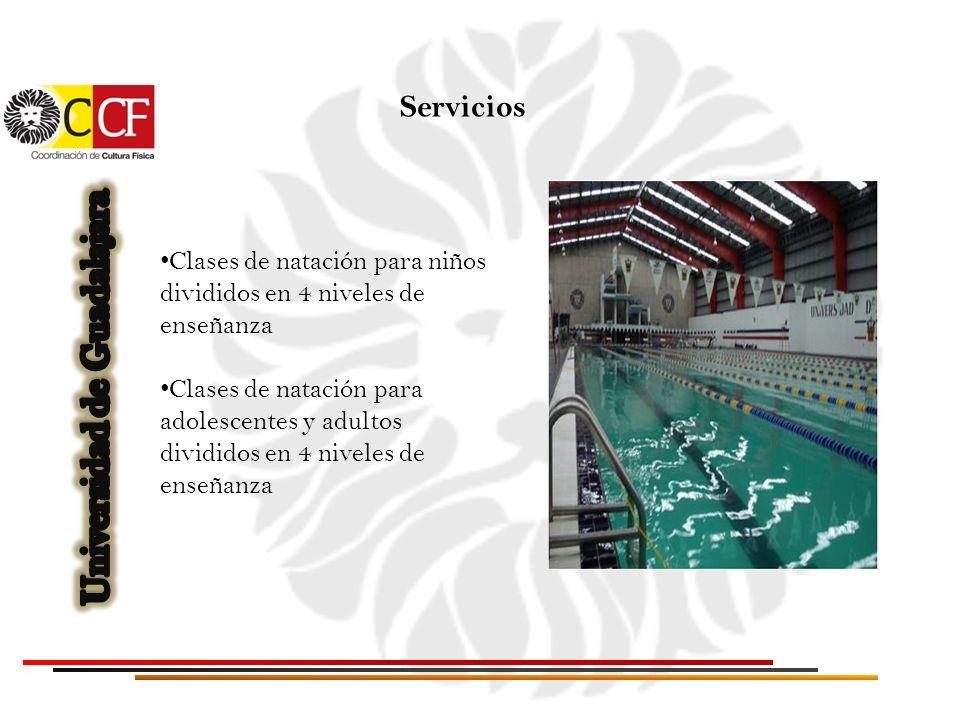 Clases de natación para niños divididos en 4 niveles de enseñanza Clases de natación para adolescentes y adultos divididos en 4 niveles de enseñanza S