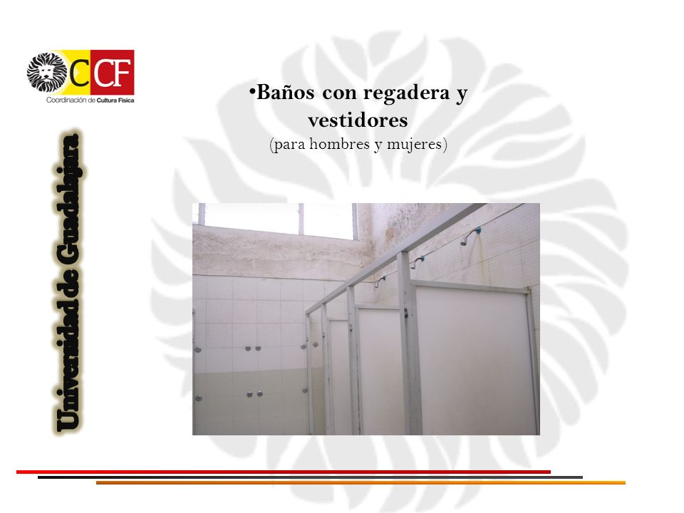 Baño De Regadera Fundamentos De Enfermeria:Baños con regadera y vestidores (para hombres y mujeres)