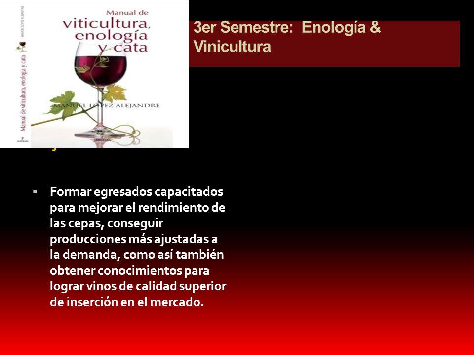3er Semestre: Enología & Vinicultura Objetivo Formar egresados capacitados para mejorar el rendimiento de las cepas, conseguir producciones más ajusta