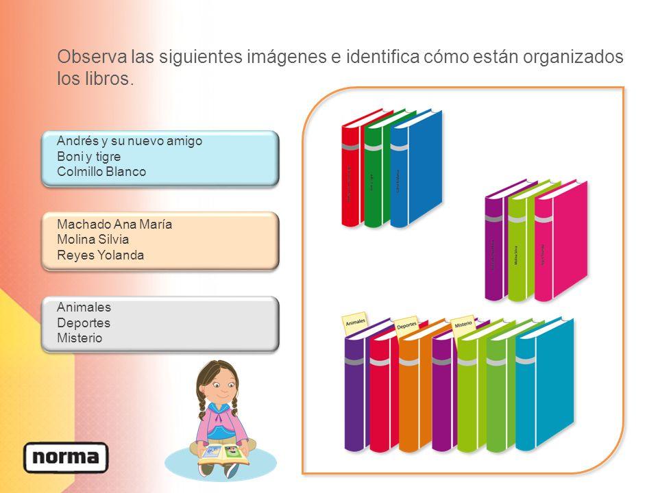 Observa las siguientes imágenes e identifica cómo están organizados los libros. Andrés y su nuevo amigo Boni y tigre Colmillo Blanco Machado Ana María