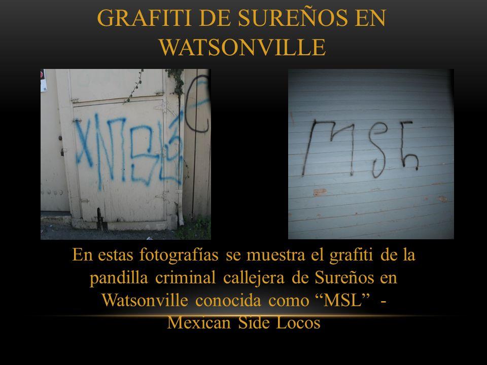 PORQUE EL GRAFITI DE PANDILLAS ES PELIGROSO El propósito del grafiti de pandillas es para glorificar la pandilla. El grafiti de pandillas es para crea
