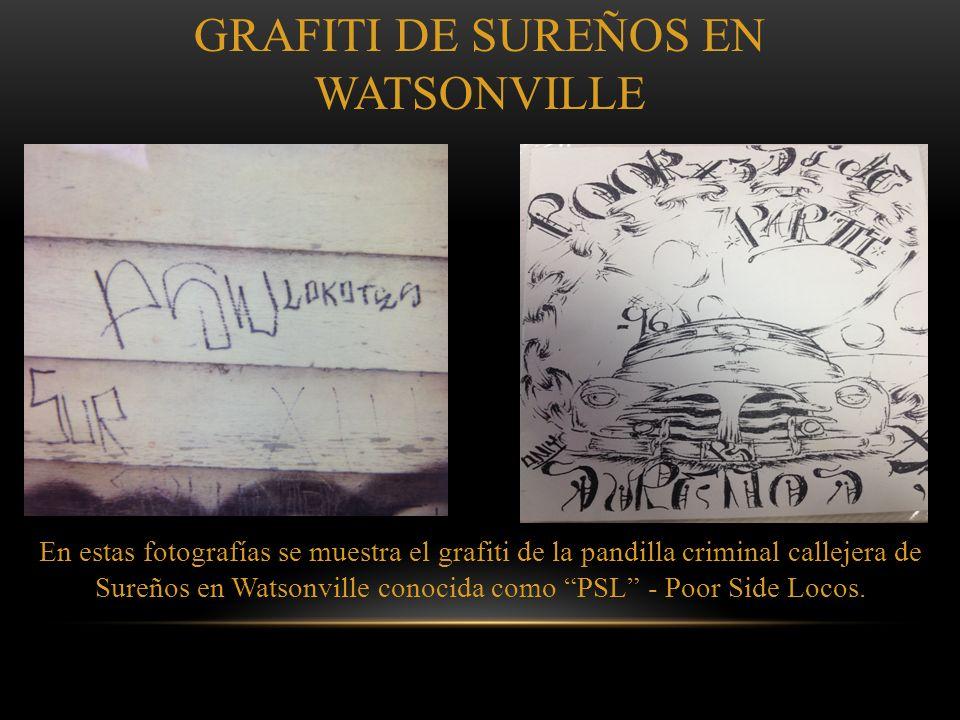 En estas fotografías se muestra el grafiti de la pandilla criminal callejera de Sureños en Watsonville conocida como MSL - Mexican Side Locos GRAFITI