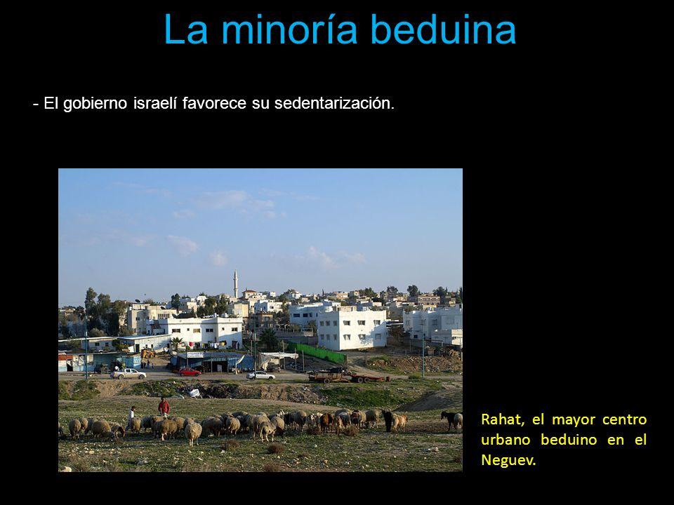 La minoría beduina - El gobierno israelí favorece su sedentarización. Rahat, el mayor centro urbano beduino en el Neguev.