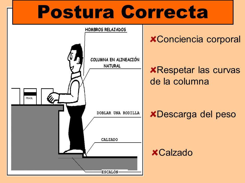 Postura Correcta Conciencia corporal Respetar las curvas de la columna Calzado Descarga del peso