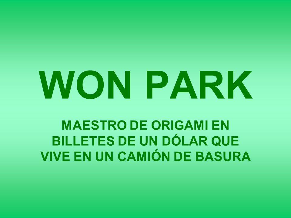 Won Park es un maestro en el arte de Origami .