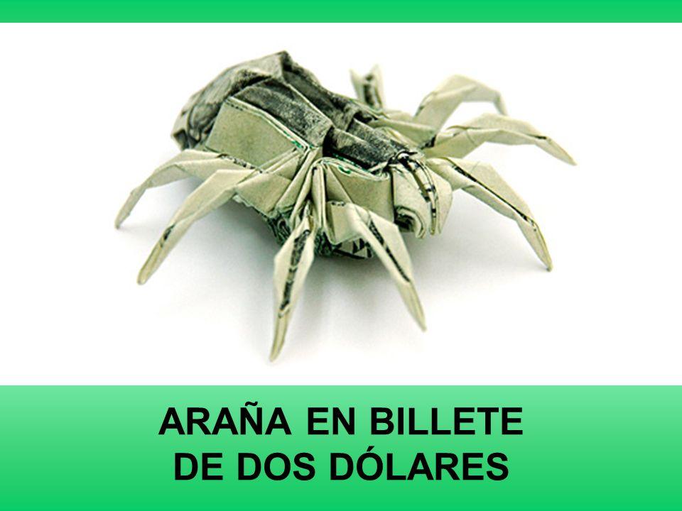 ARAÑA EN BILLETE DE DOS DÓLARES
