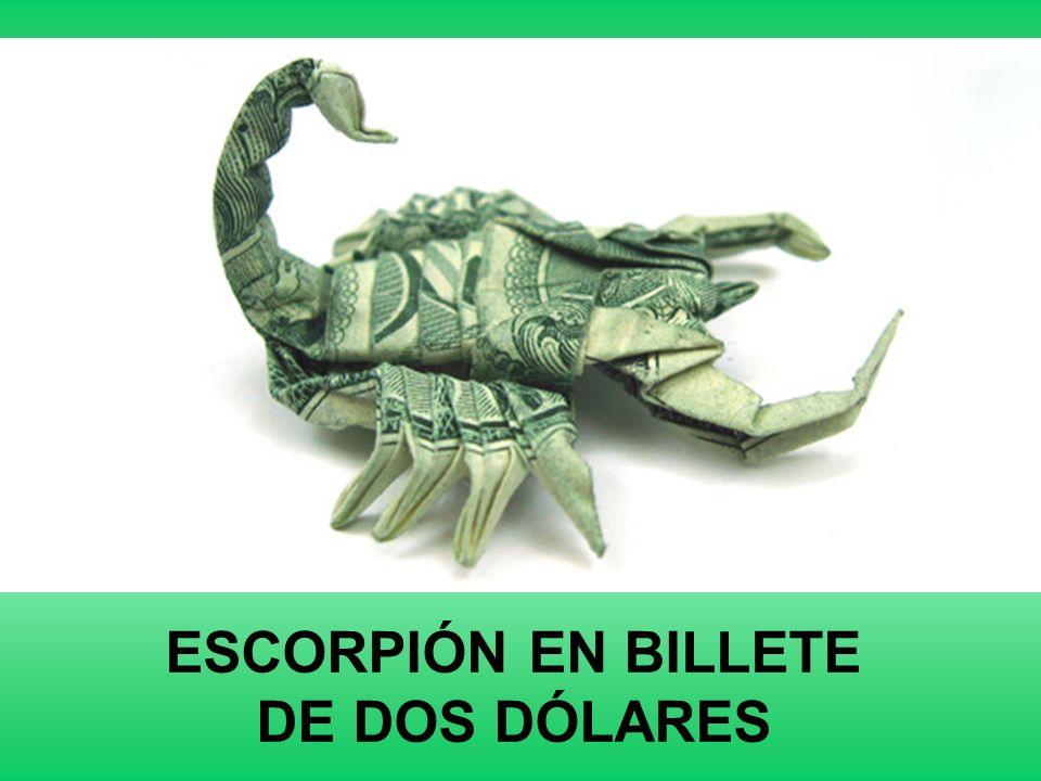 MURCÍELAGO EN BILLETE DE UN DÓLAR