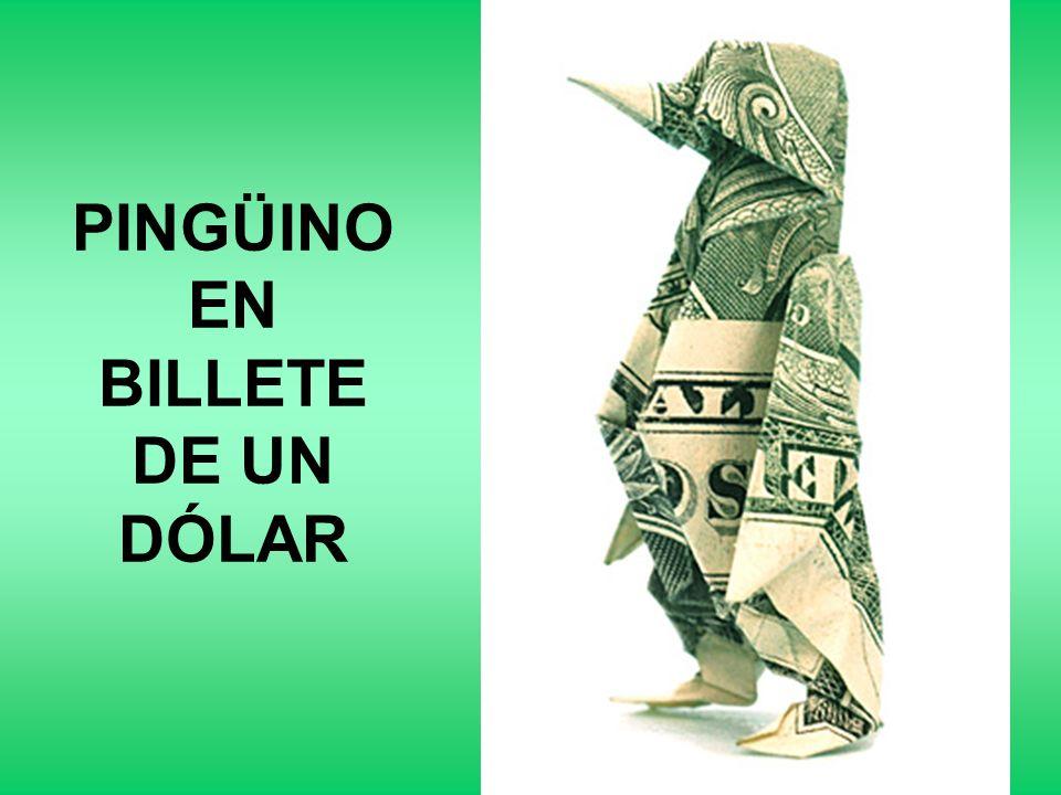 TIBURÓN EN BILLETE DE UN DÓLAR
