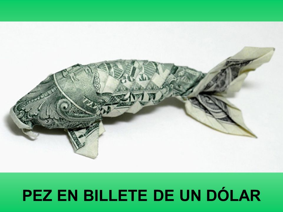 PEZ EN BILLETE DE UN DÓLAR