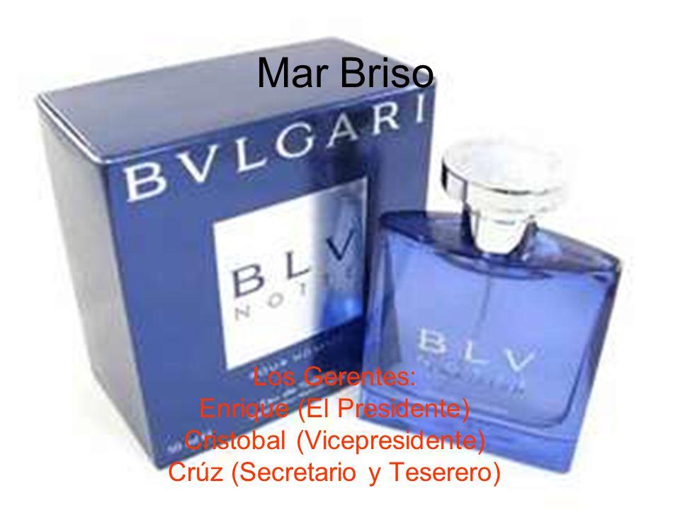 Mar Briso Los Gerentes: Enrique (El Presidente) Cristobal (Vicepresidente) Crúz (Secretario y Teserero)