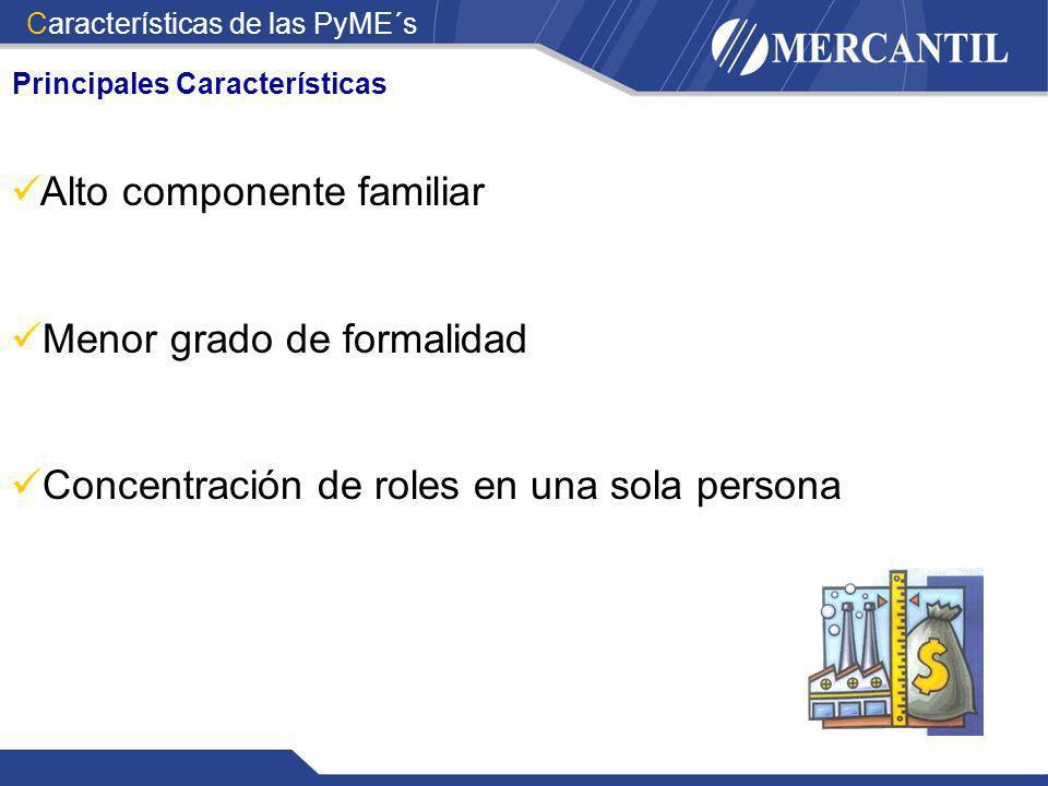 Principales Características Alto componente familiar Menor grado de formalidad Concentración de roles en una sola persona Características de las PyME´