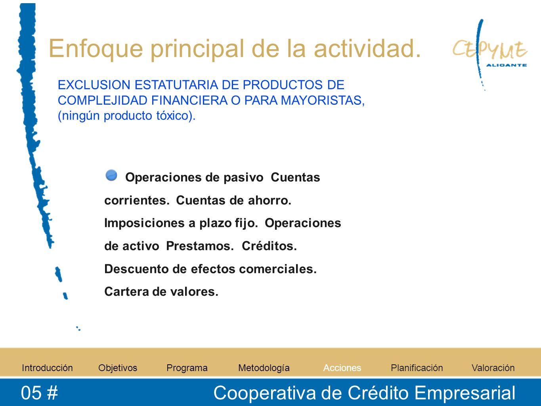 Enfoque principal de la actividad. Operaciones de pasivo Cuentas corrientes.