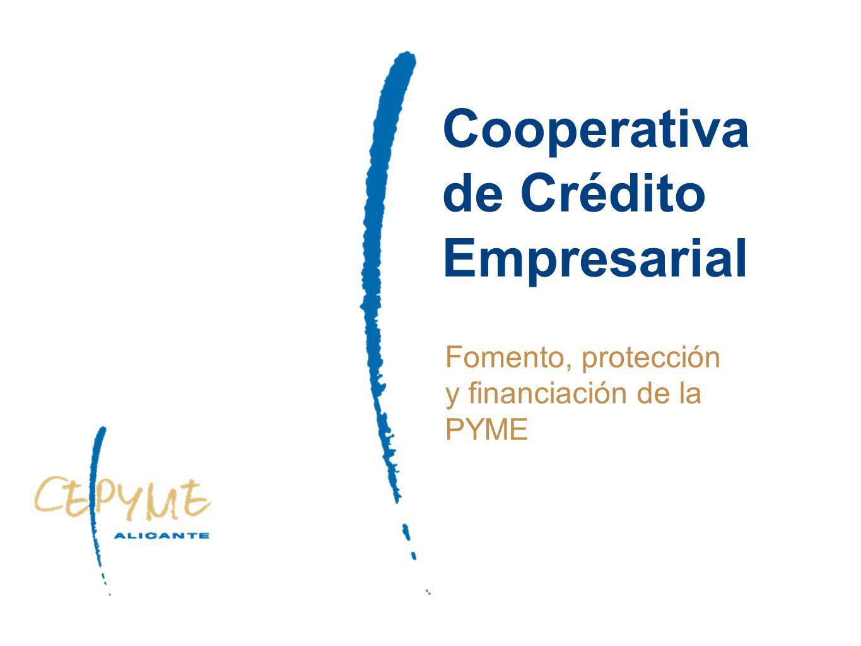 Cooperativa de Crédito Empresarial Fomento, protección y financiación de la PYME
