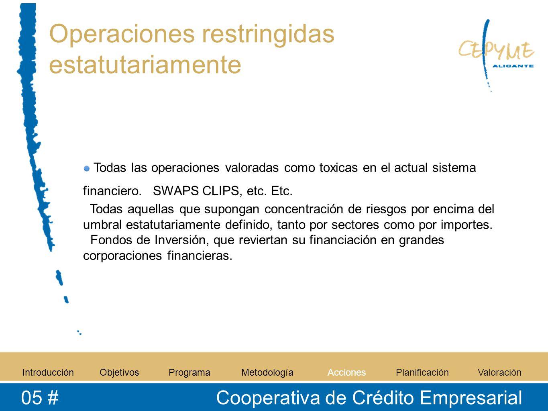 Operaciones restringidas estatutariamente Todas las operaciones valoradas como toxicas en el actual sistema financiero. SWAPS CLIPS, etc. Etc. Todas a
