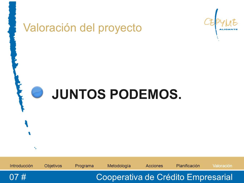 Valoración del proyecto IntroducciónObjetivosProgramaMetodologíaAccionesPlanificaciónValoración 07 # Cooperativa de Crédito Empresarial JUNTOS PODEMOS