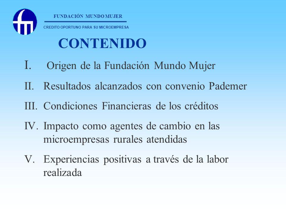 FUNDACIÓN MUNDO MUJER Es una ONG especializada en micro-crédito dirigido fundamentalmente a mujeres trabajadoras, que por lo general son madres cabeza de hogar.