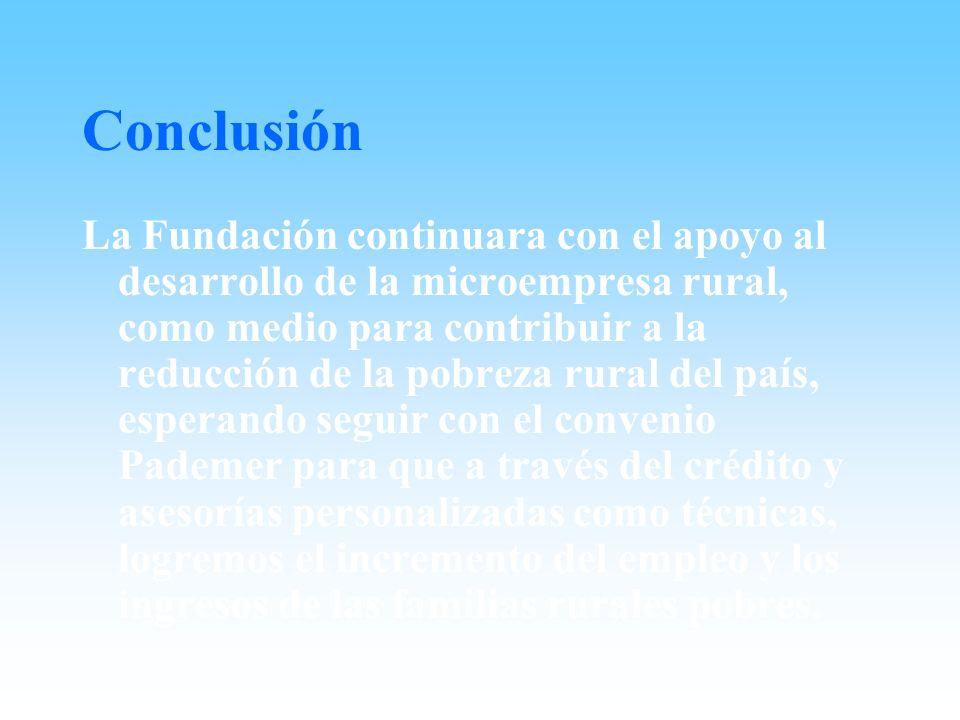 Conclusión La Fundación continuara con el apoyo al desarrollo de la microempresa rural, como medio para contribuir a la reducción de la pobreza rural