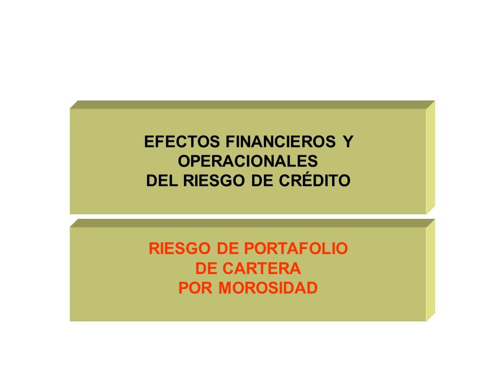 RIESGO DE PORTAFOLIO DE CARTERA POR MOROSIDAD EFECTOS FINANCIEROS Y OPERACIONALES DEL RIESGO DE CRÉDITO