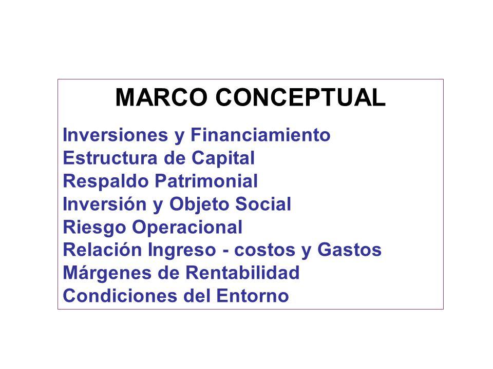 MARCO CONCEPTUAL Inversiones y Financiamiento Estructura de Capital Respaldo Patrimonial Inversión y Objeto Social Riesgo Operacional Relación Ingreso