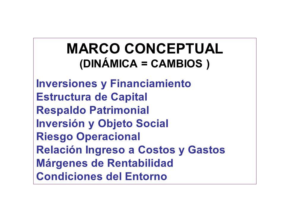 MARCO CONCEPTUAL (DINÁMICA = CAMBIOS ) Inversiones y Financiamiento Estructura de Capital Respaldo Patrimonial Inversión y Objeto Social Riesgo Operac