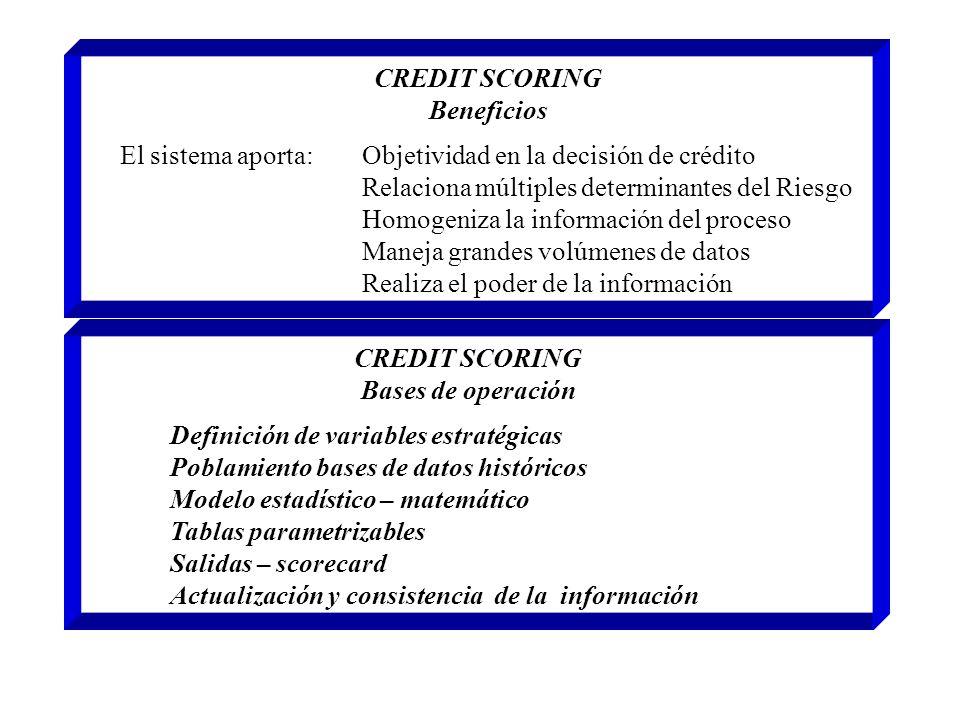 CREDIT SCORING Beneficios El sistema aporta: Objetividad en la decisión de crédito Relaciona múltiples determinantes del Riesgo Homogeniza la informac