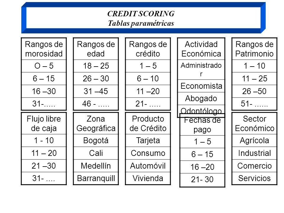 CREDIT SCORING Tablas paramétricas Rangos de morosidad O – 5 6 – 15 16 –30 31-..... Rangos de edad 18 – 25 26 – 30 31 –45 46 -..... Rangos de crédito