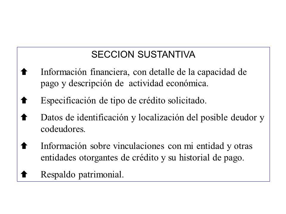 SECCION SUSTANTIVA Información financiera, con detalle de la capacidad de pago y descripción de actividad económica. Especificación de tipo de crédito