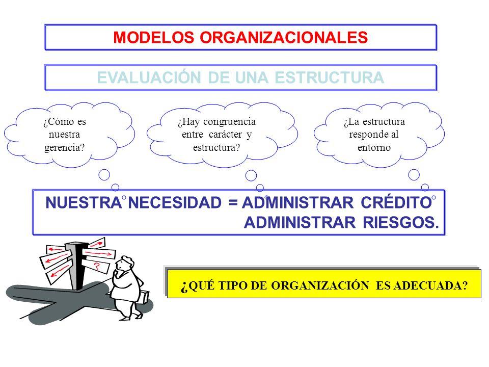 EVALUACIÓN DE UNA ESTRUCTURA ¿Cómo es nuestra gerencia? ¿Hay congruencia entre carácter y estructura? ¿La estructura responde al entorno NUESTRA NECES
