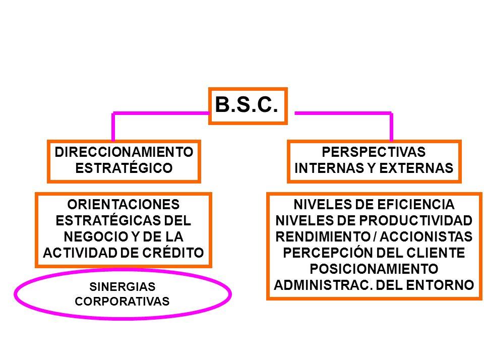 B.S.C. DIRECCIONAMIENTO ESTRATÉGICO PERSPECTIVAS INTERNAS Y EXTERNAS ORIENTACIONES ESTRATÉGICAS DEL NEGOCIO Y DE LA ACTIVIDAD DE CRÉDITO NIVELES DE EF